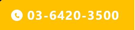 03-6420-3500